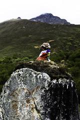1606 Chomolari trek-1070950 (esther.park) Tags: bhutan chomolaritrek day3 landsape phallus prayerflags