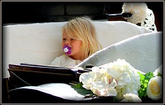 With grandmother's permission (* RICHARD M (Over 5 million views)) Tags: street candid portraits portraiture streetportraits streetportraiture candidportraits candidportraiture wedding blond blondie dummy babypacifier babysoother pacifier soother babydummy southport sefton merseyside hotsedrawncarriage carriage unsure uncertain pensive cute littleprincess flowers innocence weddings