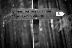 IMG_1567 (Lorenzo Pauselli) Tags: altoadige sdtirol vacanze castelrotto 2016 estate dolomiti montagna streghe valli rocce funghi fungo portraits ritratto primopiano scattirubati