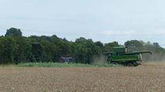 Getreide-Erntemaschine (Mähdrescher)