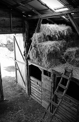 Haystacks (Juan-Carlos Munoz-Mateos) Tags: blackandwhite stable pucon chile horse riding haystack hay outdoor