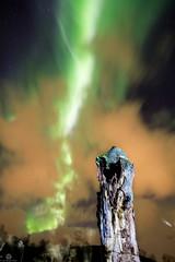 Northern Light Streak (Jan-Roger Olsen) Tags: 2015 2015october auroraborealis dark green harstad longexposure natt natur nature night nordlys norge northernlight norway october oktober outdoor stars tripod troms no