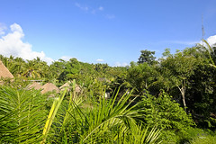 Morning view (A. Wee) Tags: sankara resort hotel  ubud bali  indonesia  view village