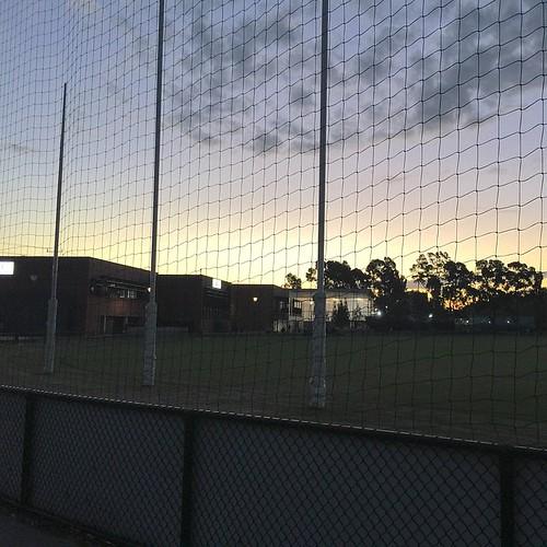 North Melbourne Football Club image