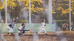 (At That Time.) Tags: japan eos rebel tokyo kiss baseball ueno    sl1   x7    100d