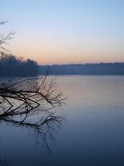 Entre l'eau et la glace * (Titole) Tags: morning reflection sunrise branches bassindetrévoix trévoix titole nicolefaton