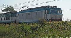 E632 051 + E656 - R10336 (MattiaDeambrogio) Tags: train si trains il piemonte non treno 2009 tigre documento alessandria storico treni regionale tutto dtr vede novara e656 e632 vespolate