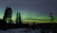 aurora on 19th of march (Mike Reva) Tags: wood sky stars landscape russia wideangle astro andromeda astrophotography aurora astronomy starry auroraborealis astrophoto starrynight stargazing cassiopea astrometrydotnet:status=solved canon5d2 samyang24 astrometrydotnet:id=nova1088718