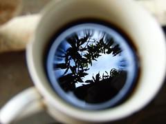 O céu numa xícara de café (Gigica Machado) Tags: coffee café reflectedsky flickrfriday thingsmoneycannotbuy