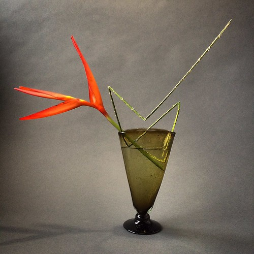 Bound flexigrass with pencil heliconia