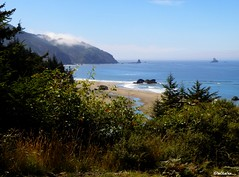 Oregon Coast Trail (tachphoto) Tags: ocean beach oregon river hiking trail oregoncoast highway101 thomascreek whaleshead indiansands oregoncoasttrail
