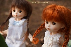 Sisters❤ (cute-little-dolls) Tags: cute garden toy doll cookie cream tiny bebe bjd buu mudoll dotories