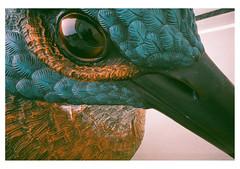 (Michal Pivko // demo930@gmail.com) Tags: color bird art film car analog 35mm canon gold lomo nikon gallery fuji prague pentax kodak superia modernart praha olympus plus fujifilm konica analogue portra ektar centuria dox leicamini demo930 lukasrittstein