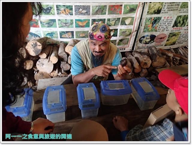 花蓮鯉魚潭螢火蟲賞蝴蝶青陽農場攝影花蓮旅遊image016