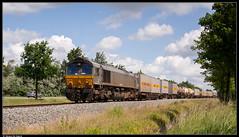Crossrail DE6308 @ Doornzele (Steven De Haeck) Tags: diesel cargo gent ludwigshafen dlc class66 crossrail sluiskil goederentrein containertrein lijn55