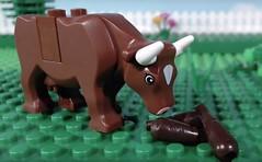 New brickfilm: https://youtu.be/AlIpQEui00w (woodrowvillage) Tags: lego legos cow farm field bull shit crap poo fart depression anxiety brick film brickfilm animation funny turd song life sucks