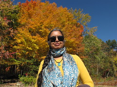 Dutchess County, NY-15.03 (davidmagier) Tags: trees portrait usa newyork sunglasses jewelry fallfoliage ponytail brewster scarves aruna
