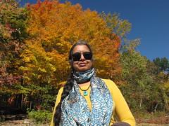 Dutchess County, NY-15.03 (davidmagier) Tags: trees portrait usa newyork sunglasses jewelry fallfoliage ponytail brewster scarves aruna