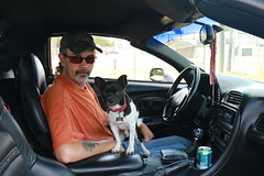 Two Cool Guys (parrotlady66..) Tags: cars sunglasses fast husband corvette winston summerdays petdog canon70d