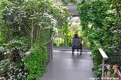 Rock Away (Trish Mayo) Tags: garden porch rockingchair nybg newyorkbotanicalgarden thebestofday gnneniyisi gardenexhibit gardensoncanvas