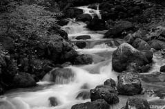 DSC05425 (lowra51) Tags: pose photo reflex eau flickr noir sony riviere passion savoie paysage et 74 arbre blanc rocher slt haute facebook a57 longue twitter duree instagram snapchat