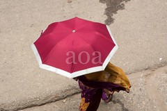 H504_3489 (bandashing) Tags: street england female umbrella manchester pavement walk magenta shade sylhet bangladesh socialdocumentary aoa bandashing akhtarowaisahmed