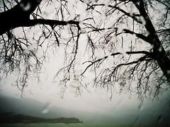 * (PattyK.) Tags: rain winter lakeside mycity whereilive february raindrops ioannina giannena giannina epirus ipiros ilovephotography