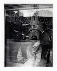Hollywood Zoltar (tobysx70) Tags: fuji fp3000b professional bw black white blackandwhite peel apart pack film instantfilm polaroid 100 frankenroid zoltar hollywood blvd boulevard los angeles la california ca prisoner of the box turban hat all knowing seeing powerful goatee reflection no pants selfie self portrait toby hancock photography