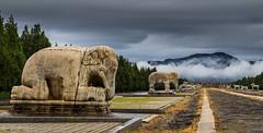 Walkway Eastern Qing Tombs (P Makin) Tags: china qing tombs walkway elephant cloud