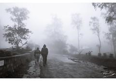 la mousson dernier (rajarshee.mukherjee31) Tags: blackandwhite monsoon mousoon morning foggy brumeux hils people canon nandihills hills fog poweshot tress mist rains ngc