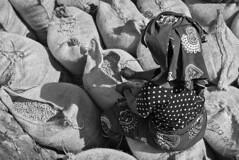 Sealing-the-Bags,-Tanzania-2015