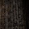 Bruder Klaus Feldkapelle (fibsen) Tags: bruder bruderklaus feldkapelle architecture arkitektur architettura architect arkitekt fibsen flemmingibsen ibsen kapelle chapel burned zumthor peterzumthor bruderklausfeldkapelle