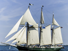 Tall ships 2016 Denis Sullivan pic2 (Artemortifica) Tags: boats chicago navypeir tallships band clouds fountains garden lakemichigan sailors sails skyline summer illinois