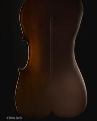 Cello-woman (Chooky1975) Tags: composite cello woman creative artistic abstract