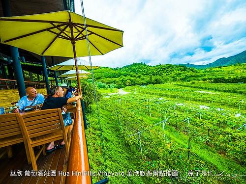 華欣 葡萄酒莊園 Hua Hin Hills Vineyard 華欣旅遊景點推薦 89