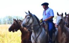 El tropillero (Eduardo Amorim) Tags: southamerica argentina cavalo gauchos bit halter ayacucho pampa riendas hest hevonen apero gaucho bridle 馬 américadosul häst platería bozal gaúcho cabezada 말 amériquedusud provinciadebuenosaires reins лошадь gaúchos 马 sudamérica suramérica américadelsur סוס südamerika freno cabresto حصان freio pilchas coscoja άλογο buenosairesprovince cabeçada pilchasgauchas pampaargentina cabestro americadelsud plateríacriolla ม้า americameridionale barbada rédeas barbela eduardoamorim buçal coscós pampaargentino pontezuela pontessuela ঘোড়া