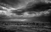 (Chains of Pace) Tags: blackandwhite storm oklahoma clouds landscape unitedstates guymon