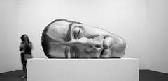 Ron Mueck (*Ολύμπιος*) Tags: art arte sãopaulo escultura sp exibition exposição ronmueck
