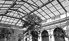 Derby Court (tim.perdue) Tags: columbus ohio bw white black art glass monochrome museum architecture court gallery skylight derby cma