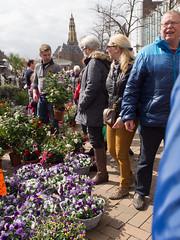 Bloemetjesmarkt in Groningen (Jeroen Hillenga) Tags: city netherlands cityscape candid groningen bloemen stad vismarkt bloemetjesmarkt goedevrijdag