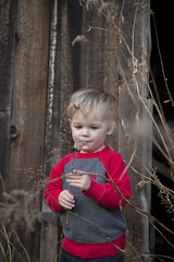 IMG_3119 (yasdnilnoyl) Tags: outdoors weeds curious springtime toddlerboy