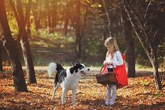 Red riding hood (Kalina Serafimova) Tags: fairytale photography wolf child sofia bulgaria redhood kalinaserafimova