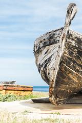 Painting Boats (albher) Tags: sicily palermo viaggio sicilia trapani bonagia tonnara valderice