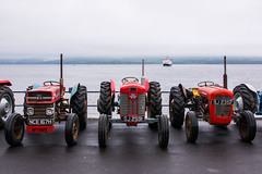 Massey Ferguson Tractors (Briantc) Tags: scotland bute isleofbute rothesay tractor tractors tractorrally masseyferguson masseyfergusontractor