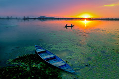 Dal Lake... (mehtasunil) Tags: travel blue sunset sky lake water reflections landscape boat kashmir srinagar leicacamera dallake blueboat indiapictures leicalens leicaq leicaforum leicaimages natgeotravel leicaindia indiashutterbugs