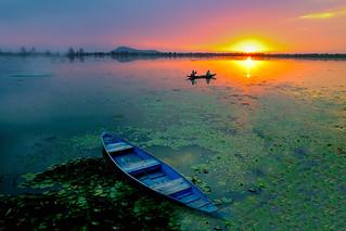 Dal Lake...