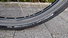 10 Jahre SCHWALBE Marathon (twinni) Tags: mw1504 10072016 bike beachcruiser reifen tyre 26x20 schwalbe marathon 26 20