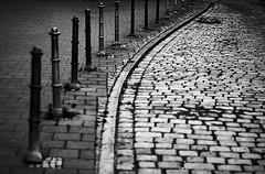 Weggefhrten - Companions (Bernd Kretzer) Tags: strase street schwarzweiss blackwhite franken franconia nikon afs dx nikkor 50mm f18 g