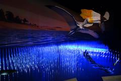 Tubos de Agua 03031 (Omar Omar) Tags: pterosaurs pterosaurios ptrosaures flugsaroj flyingdinosaurs dinosauriosvoladores flugantedinosaroj dinosauresvolants lagartosvoladores nhm naturalhistorymuseum museodehistorianatural muse museo museum losangeles losngeles losangelesca losngelescalifornia la california californie usa usofa dscrx100 sonydscrx100 rx100 cybershotrx100 diorama fsil petrificado