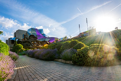 Marques de Risqual (nicolas.vogt) Tags: architecture frank de spain country gehry bodega marques rioja basque risqual
